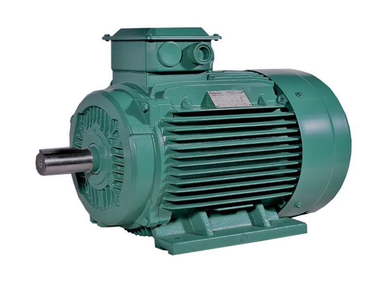 Leroy-Somer Motor